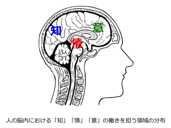 知情意の領域