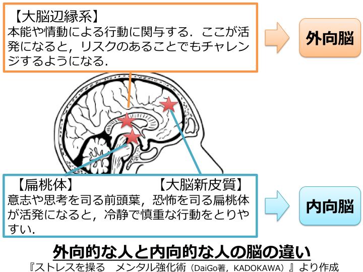 外向的な人と内向的な人の脳の違い