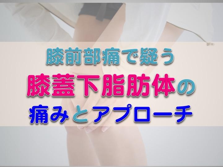 膝蓋下脂肪体の構造と機能−疼痛機序とアプローチを考える−