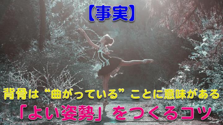 """【事実】背骨は""""曲がっている""""ことに意味がある!姿勢を良くするコツ"""