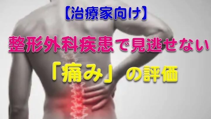 【総ざらい】整形外科の理学療法士がおさえておくべき!「痛み」の評価