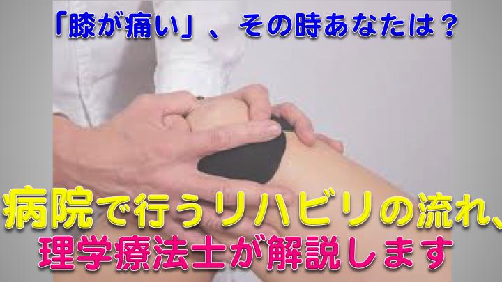 【膝の痛み】病院で行うリハビリの流れを、理学療法士が解説します!