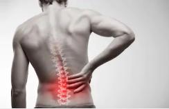 【スッキリ】腰痛の予防・解消には、「腸内環境」にも気をつけるべき