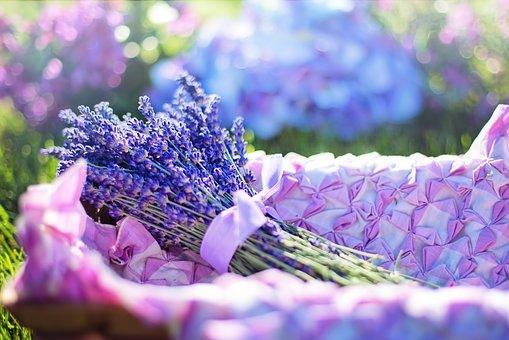 【エビデンス】乳がん患者に対するアロマセラピーマッサージが不安を軽減させる