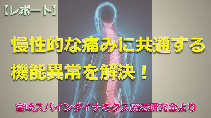【レポート】脊柱から慢性的な痛みを解消☆(宮崎スパインダイナミクス療法研究会・ナイトセミナー)